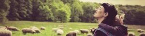 Trageberatung Nesthäkchen - Deine Trageberatung und Stillberatung für Dortmund, Herne, Castrop-Rauxel, Schwerte, Herdecke und Umgebung. Als ausgebildete Trageberaterinnen und Tragemamas vermitteln wir Dir verschiedene Binde- und Wickeltechniken, die perfekt auf das Alter Deines Kindes abgestimmt sind. Als zertifizierte Stillbegleiterin und Stillberaterin stehen wir Dir bei allen Fragen umfassend zur Verfügung. Wir verfügen auch über das größte Sortiment an Tragetüchern, Tragehilfen und Tragesystemen, die Du auch gleich ausgiebig erproben kannst.
